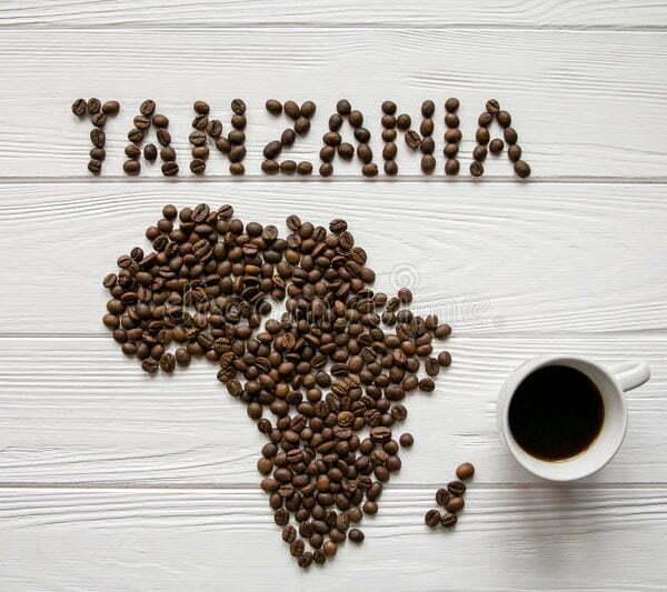 Tanzaniz